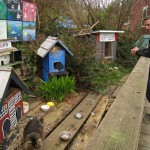 Bob visits Ferral Cat Town in Bamfield