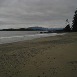 Brady's Beach in Bamfield