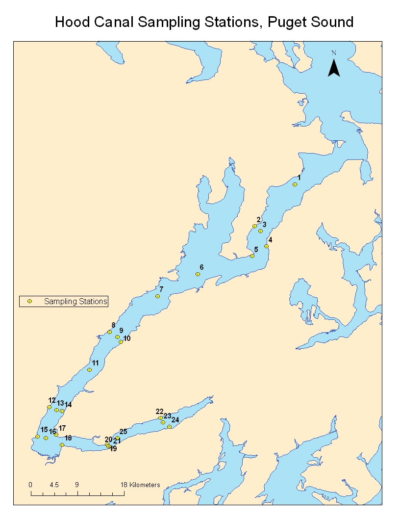 Hood Canal Results And Discussion