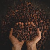 Colombian cacao