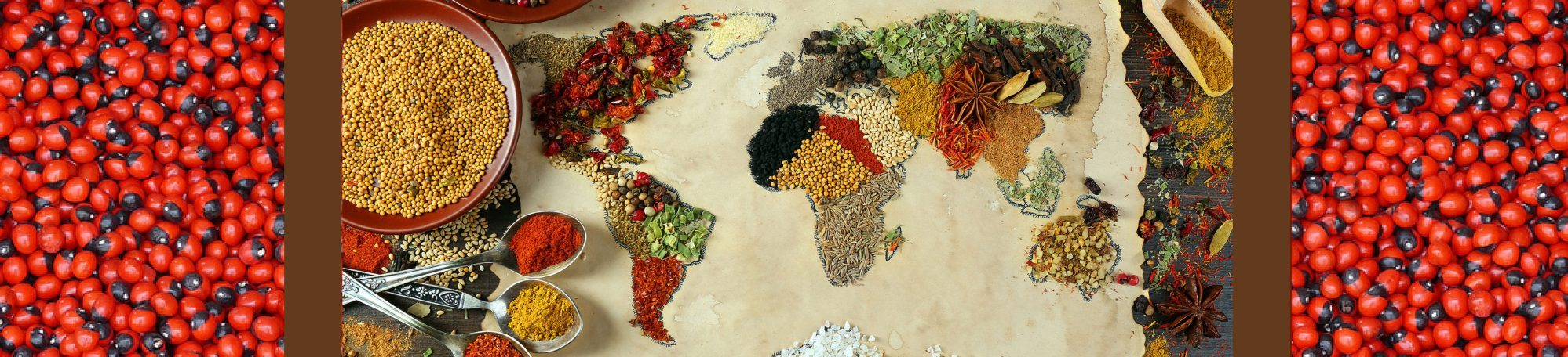 Political Ecology of the World Food System